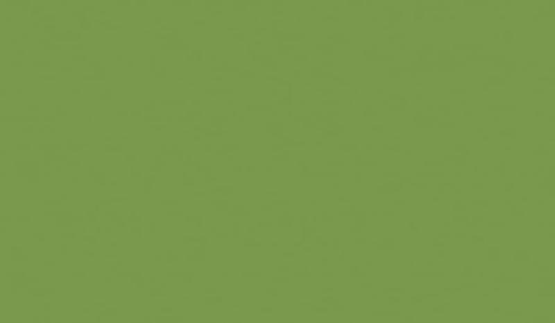 Зелёный-киви-min