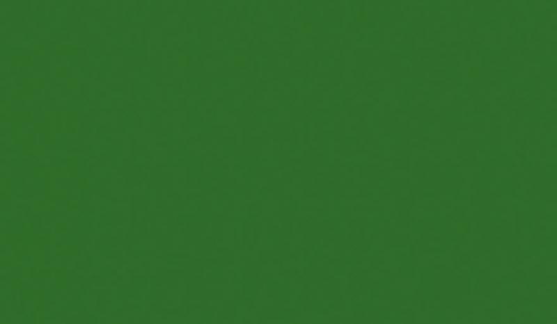 Папортник-зелёный-min