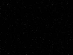 P04 Perna Black