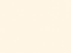 S09 Cream