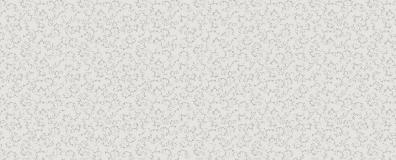 5004-S-Сатин-2-группа